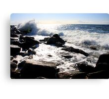 Northeast Coast Nova Scotia VII Canvas Print