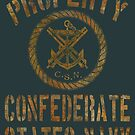 Property Confederate States Navy Light Design by Larry Oates