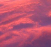 Arizonia Sunset by Dianne Rini