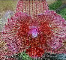 Orchid In Craquelure 3D by Deborah  Benoit