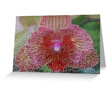 Orchid In Craquelure 3D Greeting Card