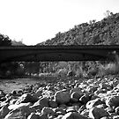 Bridgeport, South Yuba River State Park by flyfish70