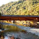 Bridgeport, South Yuba River State Park #3 by flyfish70