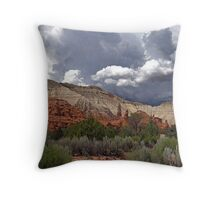 Kodachrome Basin Throw Pillow