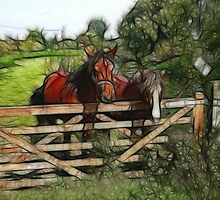 Horses over the fence by len Janes