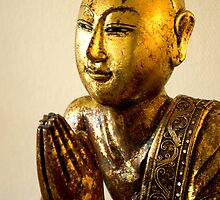 Disciple of the Buddha II - 2 by steppeland