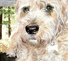 Katie the West Highland White Terrier by Yvonne Carter