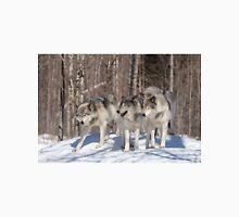 Timber wolves in winter T-Shirt