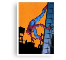 Does whatever a spider can... Canvas Print