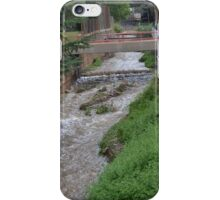 Water Ditch Beside the Tombstone Cyn. Rd. in Bisbee iPhone Case/Skin