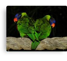 The Flying Twins Canvas Print