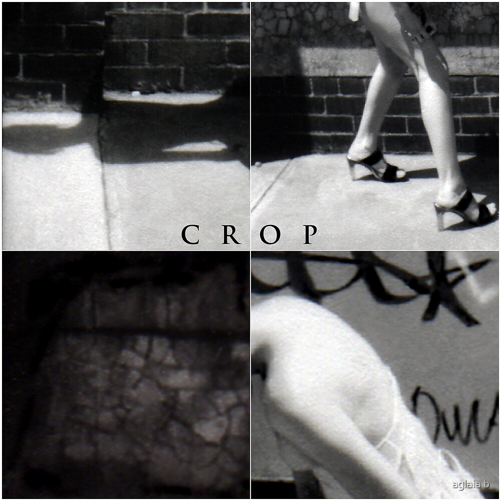 cropping is for farmers by aglaia b
