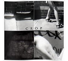cropping is for farmers Poster