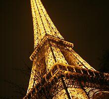 Eiffel Tower at Night by Tarryn Godfrey