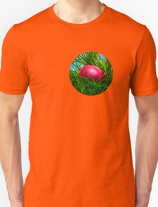 Red Easter egg in the grass T-Shirt