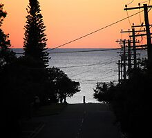 Morning Glory, Shelly Beach, Queensland by Simmone