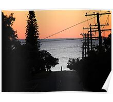 Morning Glory, Shelly Beach, Queensland Poster