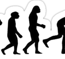 Evolution Outta Nowhere Sticker