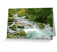 Nameless Creek (one of hundreds along Milford Track) NZ Greeting Card