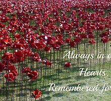 Remembered Forever - Poppies at the Tower by InterestingImag