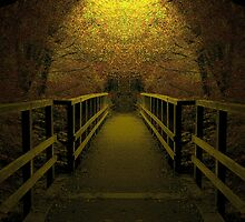 Cross into the Light by relayer51