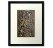 Aged Boat Bark Framed Print