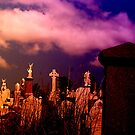 Graveyard by Storm Designs