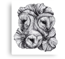 Compass - Barn Owls and Hibiscus Flowers Canvas Print