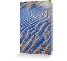 Crab Trail, Cable Beach Broome, Western Australia Greeting Card