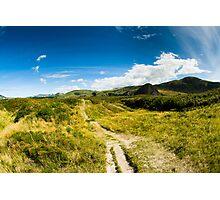 Rural scenery at Dunedin Photographic Print