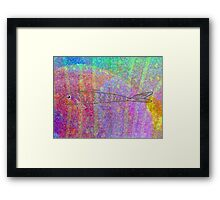 A Sea of Color Framed Print