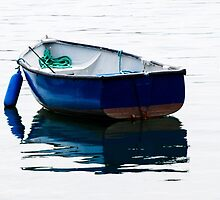 Blue Row Boat by Mary Carol Story