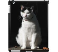 Black and White Cat Sitting iPad Case/Skin
