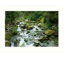 small river on routeburn track Art Print