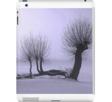 Frozen willow iPad Case/Skin