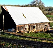Old Barn with a Pigs Sty   by Chuck Gardner
