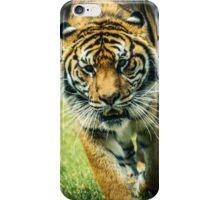 Tiger Face iPhone Case/Skin