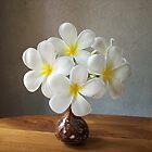 ARALIYA FLOWER  by nilantha77
