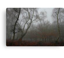 Foggy Chase Canvas Print