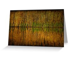 reed bed reflections Greeting Card