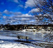 Winter Beauty by Kathleen   Sartoris