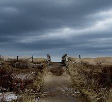Melmerby Beach Boardwalk by Kathleen   Sartoris
