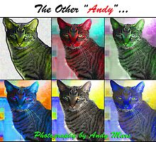"""The other """"Andy""""...calendar by andymars"""