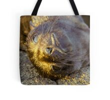 Galapagos Newborn Sea Lion Tote Bag