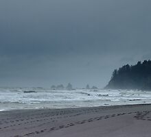 Stormy by ChrisRadek