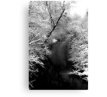 Natures Black and White Canvas Print