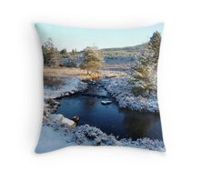 Wintry Stream  Throw Pillow
