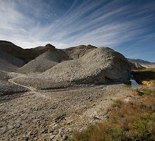 Salt Creek by Denise Goldberg