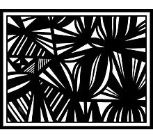 Ellenwood Abstract Expression Black and White Photographic Print