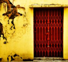 Red Door by Steven  Siow